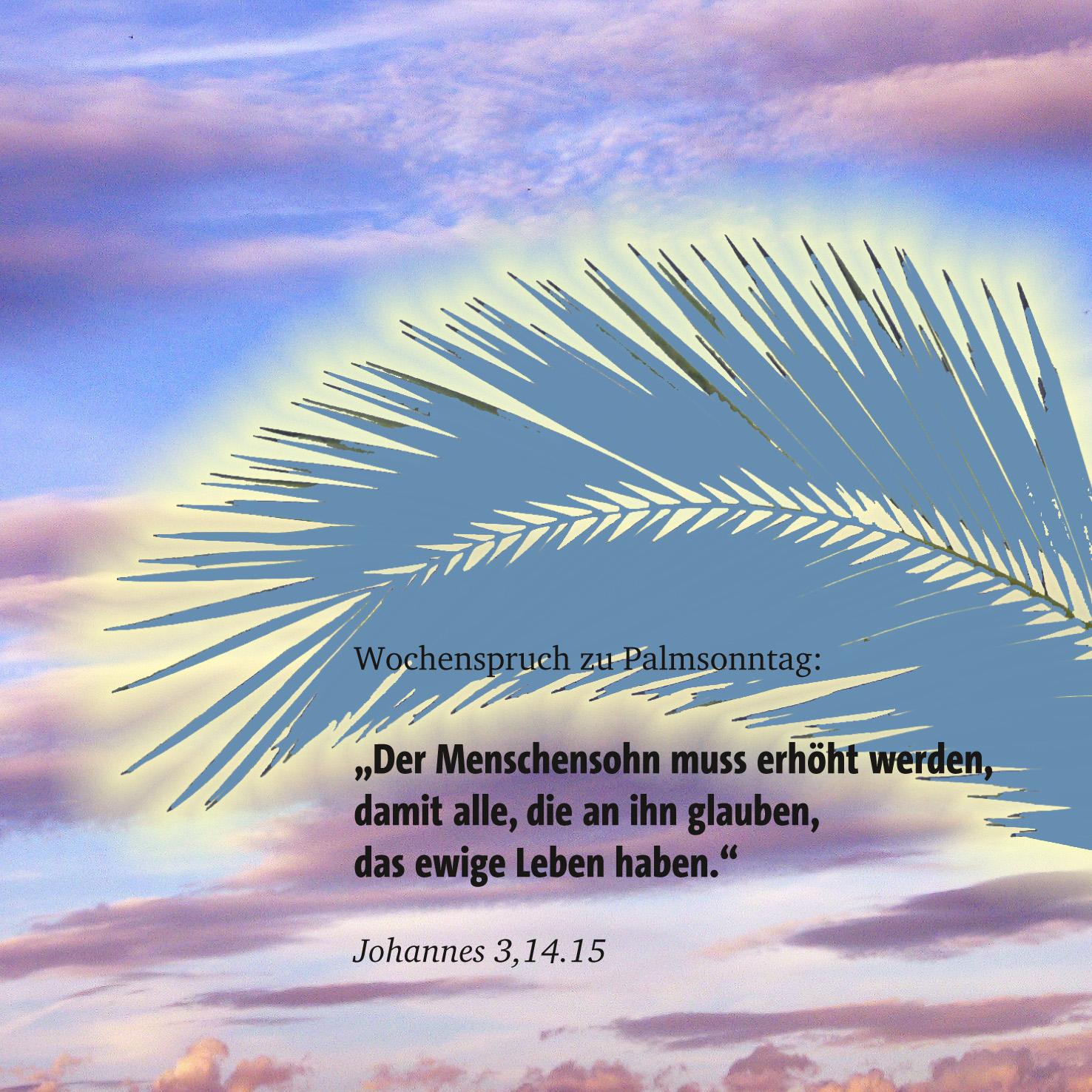 Gottesdienst zuhause feiern Palmsonntag 05.04.2020